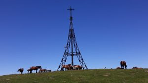 pays-basque-cheval